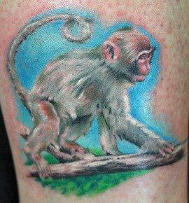 nghĩa hình xăm con khỉ - Ý nghĩa hình xăm con khỉ