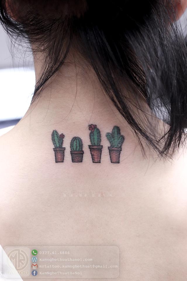 Hình xăm cây xương rồng - Hình Xăm Nhỏ tại Mr.Tattoo - Những mẫu xăm nhỏ đẹp nhất 1.