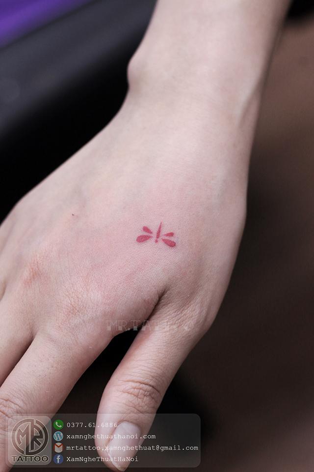 Hình xăm chuồn - Hình Xăm Nhỏ | Mini Tattoos